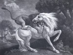 George Stubbs, A Lion devouring a Horse (1788), Soft-ground etching with roulette work, 27.5 x 35.4 cm. Image courtesy of Nicholas Stogdon.
