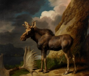 George Stubbs, The Moose (1770), Oil on Canvas, 61 x 70.5 cm © The Hunterian, University of Glasgow, 2016